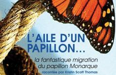 Oltome - L'aile d'un papillon