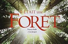 Oltome - Il était une forêt