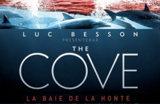 Oltome - The Cove La baie de la honte