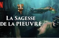 Oltome - La sagesse de la pieuvre